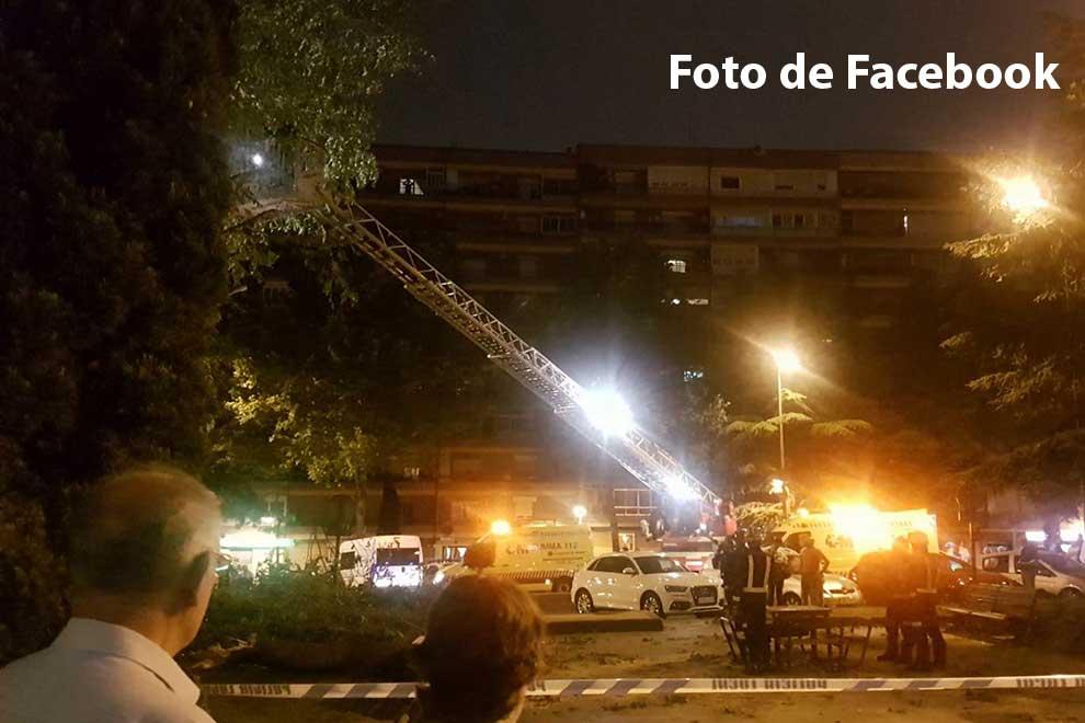Los bomberos trabajando en el árbol